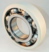 Ceramic Insulated Ball Bearings